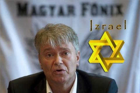 Bíber József Tibor, Főnix párt